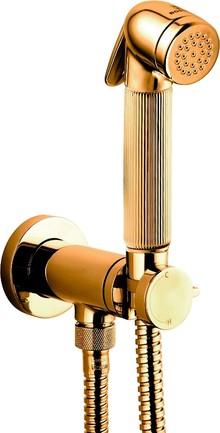 Гигиенический душ Bossini Nikita Mixer Set E37008B со смесителем, золото
