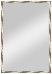 Зеркало Evoform Definite BY 0622 48x68 см витое серебро