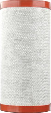 """Картридж Барьер Профи BB 10"""" Ферростоп для удаления железа из воды"""