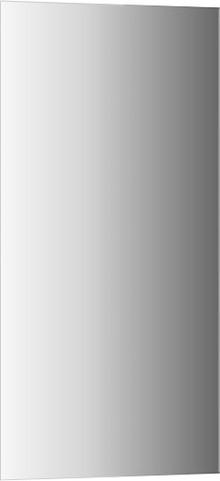 Зеркало Evoform Standart BY 0231 50x100 см