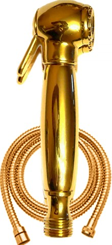 Гигиенический душ Bugnatese Ric 19380DO золото