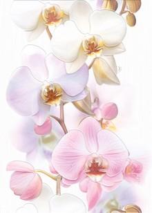 Декор Cersanit Tropicana Orchids