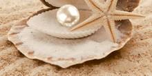Декор Нефрит-Керамика Аликанте 10-00-11-122